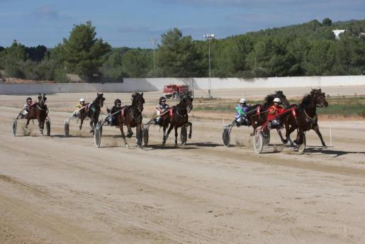 Imagen de una carrera de trote en Eivissa.