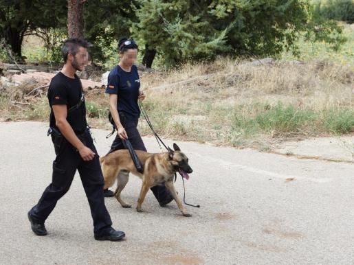 La unidad canina de la Policía Nacional ha registrado esta mañana una finca en Chillarón de Cuenca, propiedad de la familia de Sergio, exnovio de una de las dos chicas desaparecidas desde el pasado jueves y del que tampoco se conoce su paradero.