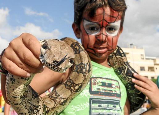 Como tantos otros niños, el pequeño Adrián se valió de los poderes de Spiderman para posar con una boa constrictor de más de un metro colgando de su cuello.