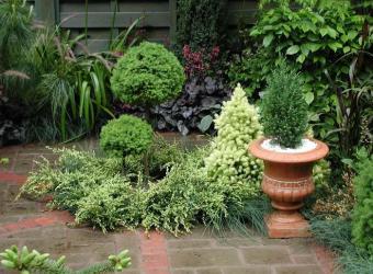 Jardinería Bisanyes