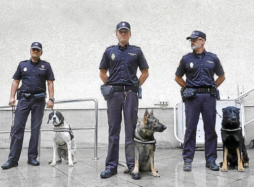 'Pancho', 'Dika' y 'Daxo', los tres agentes caninos, junto a sus guías.