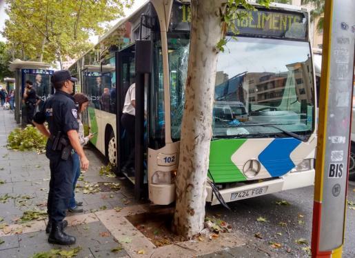 Imagen del autobús que se ha estrellado este mañana en las Avenidas.