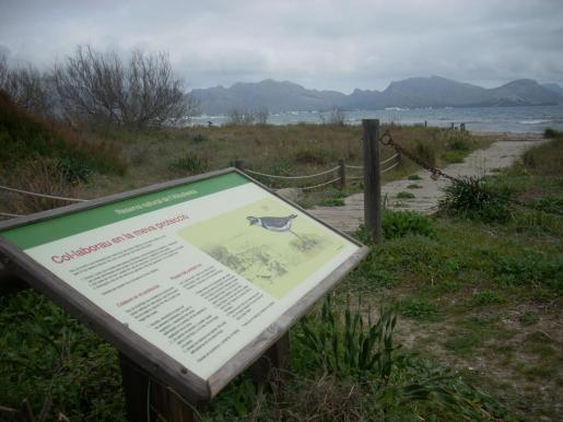 Imagen de las señalizaciones que se encuentran en s'Albufereta.