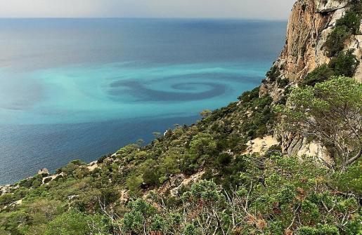 Imagen del espectacular fenómeno marino captado el martes en sa Pedrera.