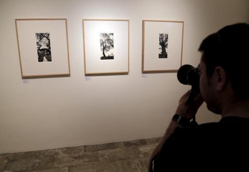 Exposición de fotografía de Toni Catany