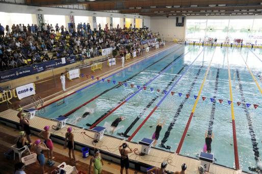 Disputa de la Copa de España de Natación en las piscinas de Son Hugo.