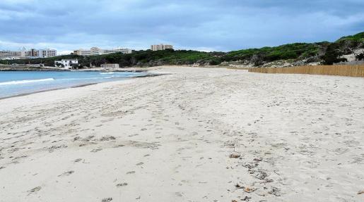 Tras el verano, la playa de Cala Agulla vuelve a lucir una mejor imagen con una mayor cantidad de sedimentos.
