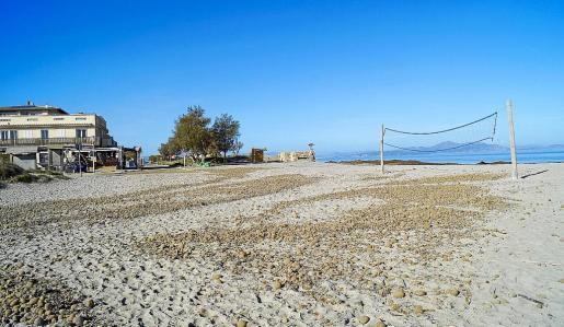 Aproximadamente en ese punto se ubicaría el chiringuito. Es un extremo de la playa de Sa Canova.