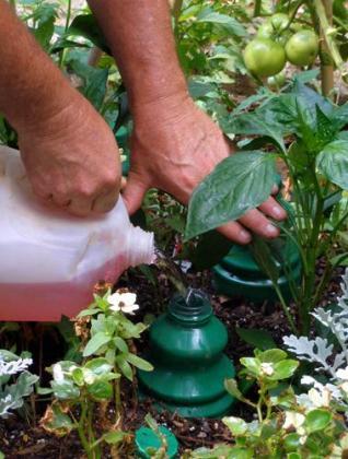 Empresa especializada en fertilizantes de plantas.