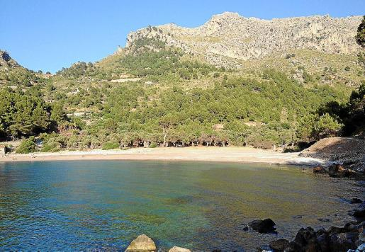 El «àrea recreativa» con párking se habilitaría dentro del olivar de Tuent.