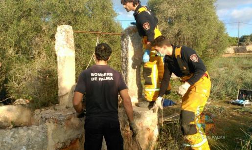 Los Bombers de Palma han rescatado el cuerpo.