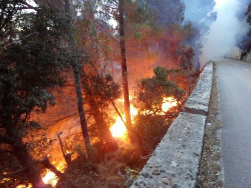El incendio se ha producido cerca de la carretera que une Valldemossa con Deià.