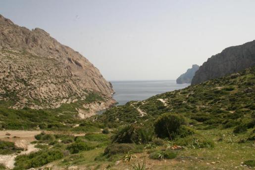 El accidente de Crespí se ha producido en la zona de Boquer, en el Port de Pollença
