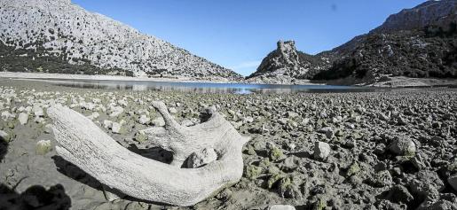 Los embalses están al 30% de su capacidad, aunque solo suponen el 5 % del abastecimiento de agua de Balears.
