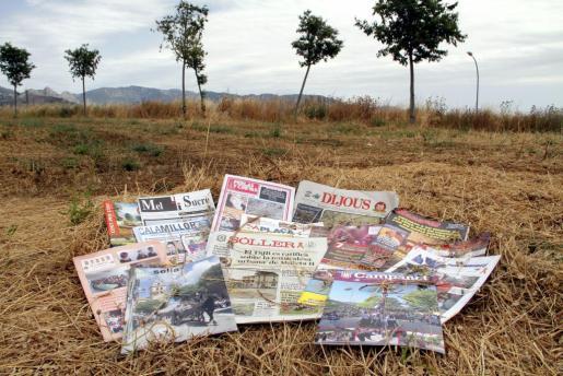 Diversas cabeceras representativos del sector de la prensa local forana.