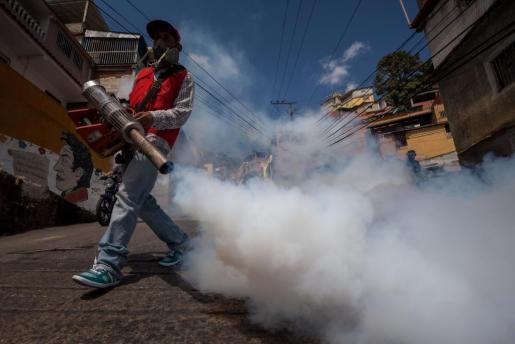 Trabajadores especialistas fumigan para tratar de paliar la expansión del virus zika.