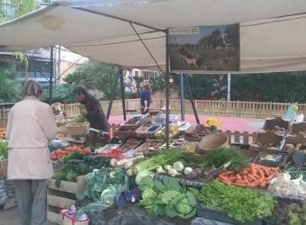 Mercado Ecológico semanal de Palma
