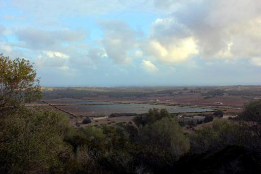 Vista de los terrenos de Santa Cirga, en Manacor.