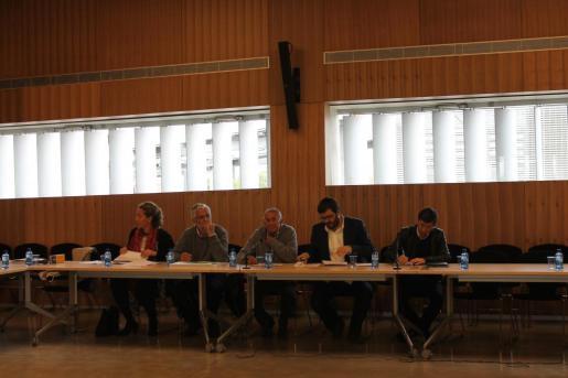 Vicenç Vidal durante la reunión de este lunes del Consell Agrari Interinsular.
