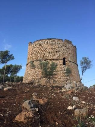 Imagen de la torre de La Mola, en el Port de Andratx.