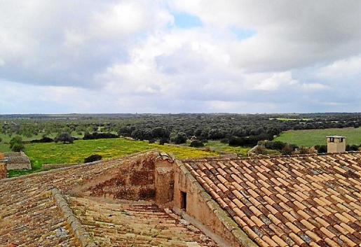 Imagen de parte de las parcelas donde se prevé la instalación del parque solar.