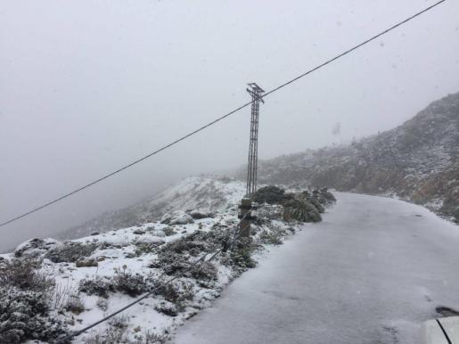 Este viernes a las 14 horas en la cota 1.100 metros de la carretera militar que sube a la cumbre del Puig Major.