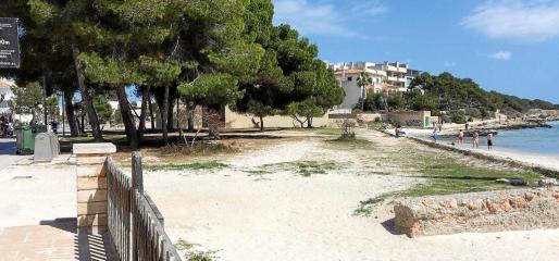 La zona verde, de unos 1.700 metros cuadrados, se ubica en la primera línea de la playa del puerto de la Colònia.