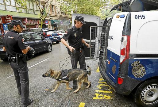 Los perros adiestrados de la policía marcaron que el paquete tenía droga.