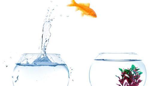 Creatividad, capacidad de adaptarse, polivalencia y habilidades comunicativas, entre las competencias más demandadas.