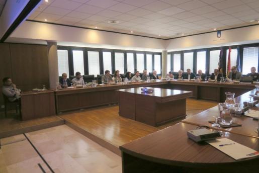 Momento de la reunión en la que se ha presentado la propuesta de los estatutos.