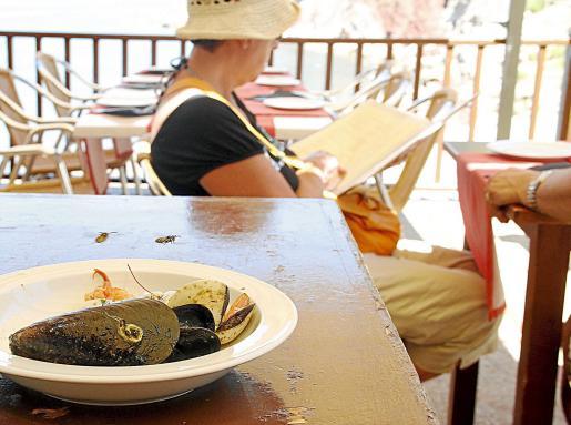 Avispas rondando la comida en un restaurante en la zona de la Serra de Tramuntana. Fotos: SEBASTIÀ AMENGUAL