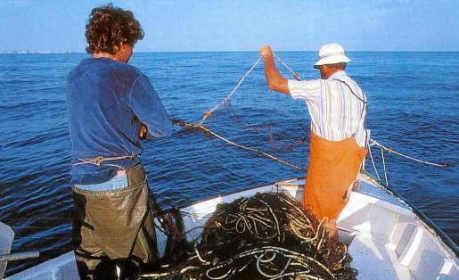 Podrán realizar esta actividad turística tanto las embarcaciones de arte menor como las de arrastre.