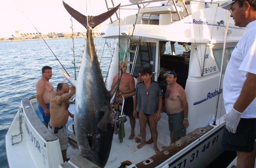 El programa abordará el tema de la pesca ilegal.