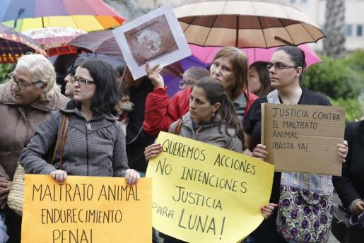Un centenar de personas reclaman justicia para Luna, el pitbull muerto en el Coll d'en Rebassa