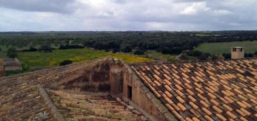 El proyecto del parque ha topado con la oposición de vecinos y Asaja, entre otros colectivos. Los terrenos propuestos se encuentran en dos conjuntos separados de parcelas de la finca de s'Àguila, situada a 25 kilómetros de Palma y a 10 del polígono de Son Noguera.