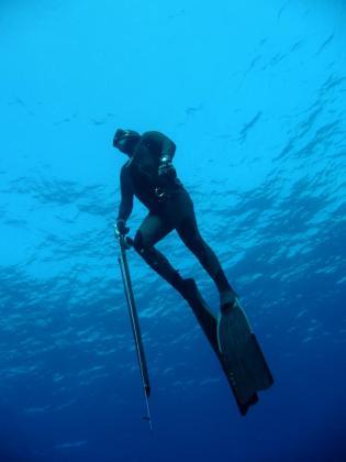 El colectivo de pesca submarina asegura no entender por qué la prohibición solo les afectará a ellos.