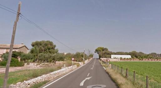 Vista general del Camí de la Milana de Palma.