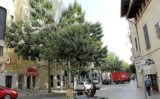 Árboles en la vía Jaume Armengol de Inca.