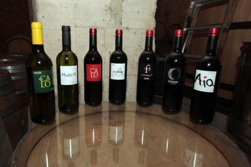 Esta bodega elabora grandes vinos con características excepcionales y de gran personalidad.
