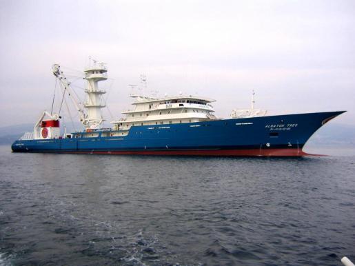 Los socios comunitarios que participan activamente en la pesca del atún rojo son España, Francia, Italia, Croacia, Grecia, Portugal, Malta y Chipre.