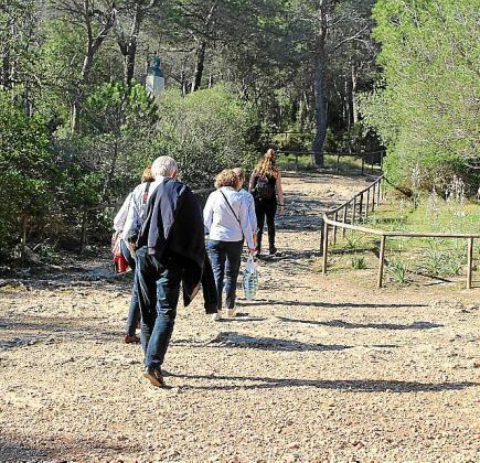 Las personas que visitan el bosque deben ir por los caminos.
