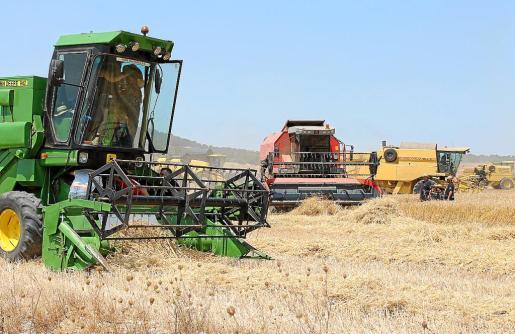 El conseller ha participado esta semana en la fiesta de la cosecha, que reunió a más de 600 personas en Vilafranca.
