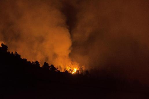 El dispositivo formado para la extinción del incendio forestal que se declaró pasadas las dos de la tarde en el municipio palmero de El Paso ha trabajado durante la noche para evitar el avance del fuego más allá de unas pistas forestales.