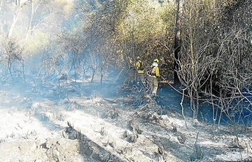 Los equipos contra incendios, en el siniestro de Son Servera.