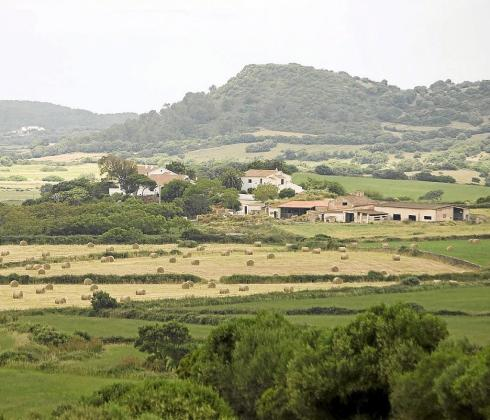 La intención del Govern es que las instalaciones agrarias no tengan que cumplir los parámetros urbanísticos.