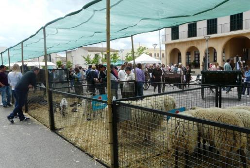 Imagen de archivo de la Fira Agrícola, industrial i ramadera de Sant Joan.