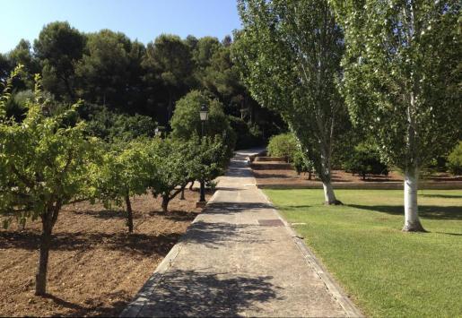 El Govern y la Casa Real han llegado a un acuerdo para que los jardines de Marivent no puedan ser visitados en las fechas con mayor posibilidad de que haya miembros de la monarquía española alojados en el palacio.
