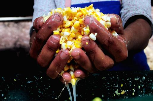 Millones de personas están por debajo del umbral de la pobreza y carecen de recursos básicos como comida, agua o vivienda.