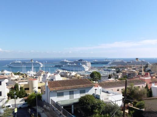 Vista del puerto de Palma con los seis cruceros.
