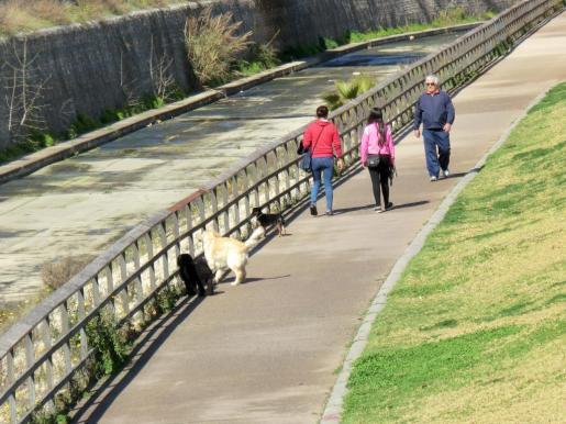 Varias personas pasean por el Parc de Sa Riera.